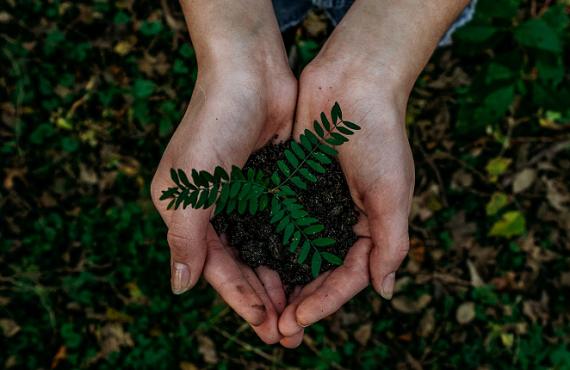 mededinging en duurzaamheid